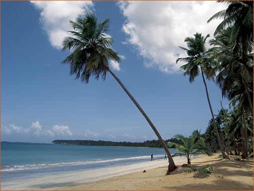 Image of Coson Beach, Dominican Republic