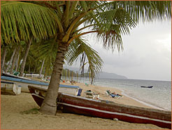 Image of Beach Boats