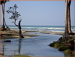 Image of the river at Coson Beach